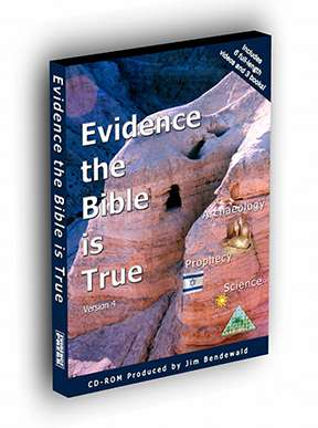 Evidence 3D small2